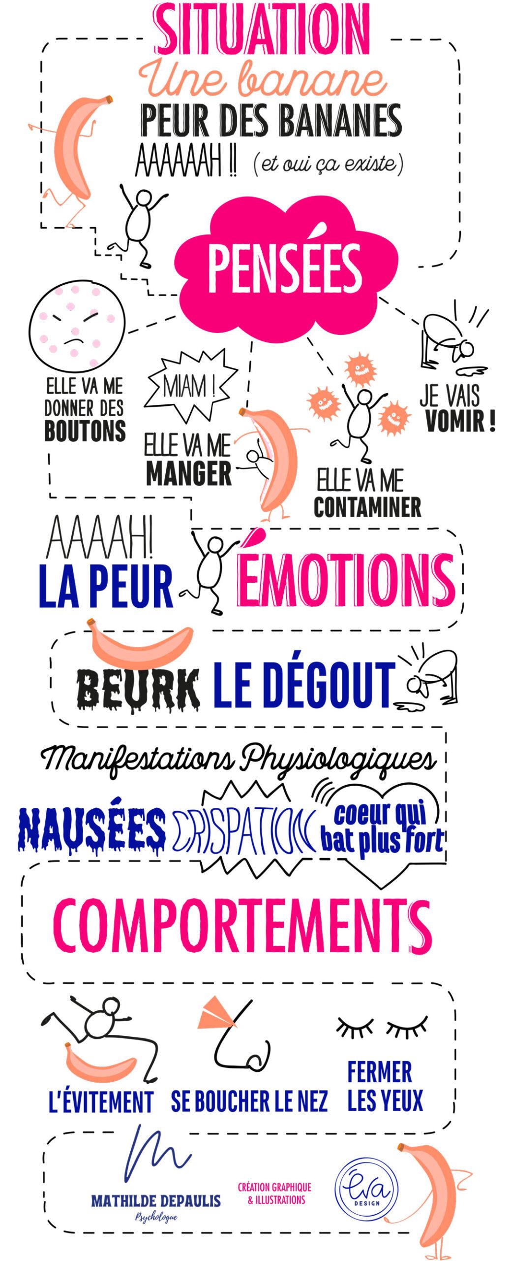 schema des situations et des émotions et comportements
